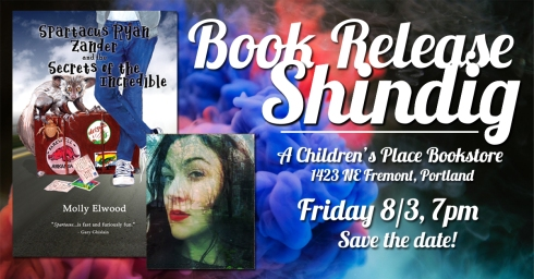 Facebook book launch STD